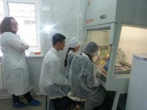 В лаборатории микробиологии академии